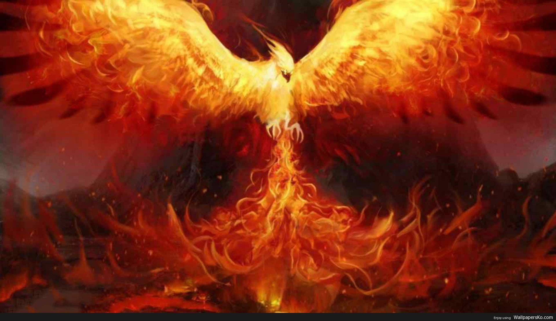 phoenix wallpaper hd