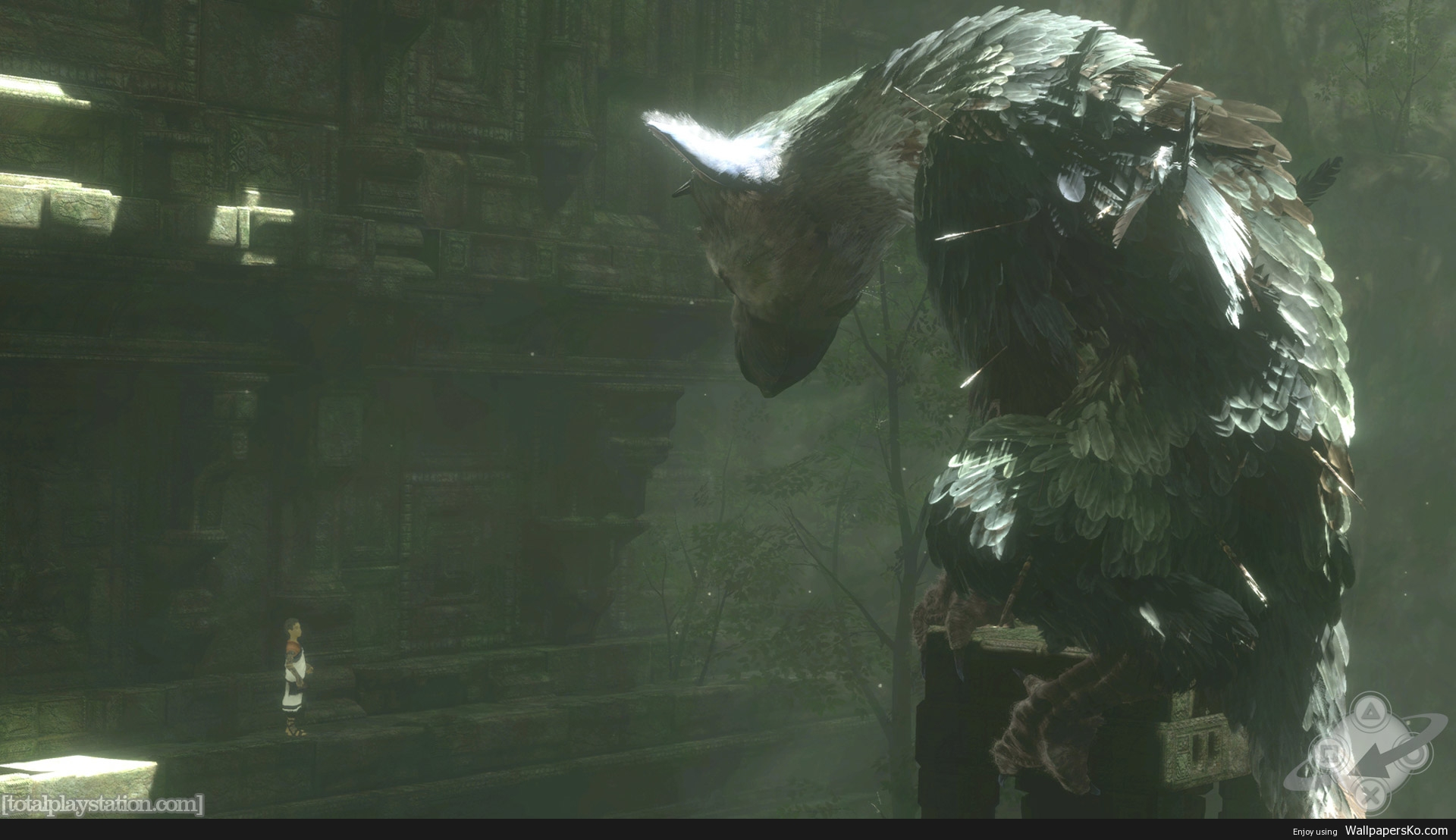 the last guardian wallpapers hd