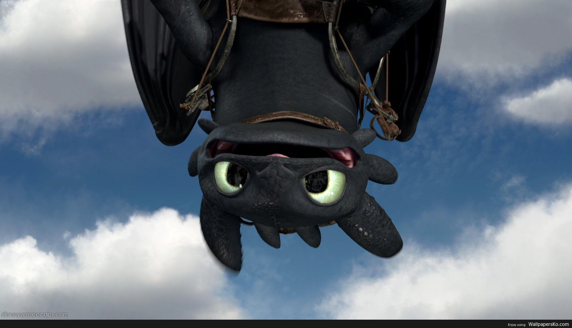 Toothless Dragon Wallpaper Hd Wallpapers Download