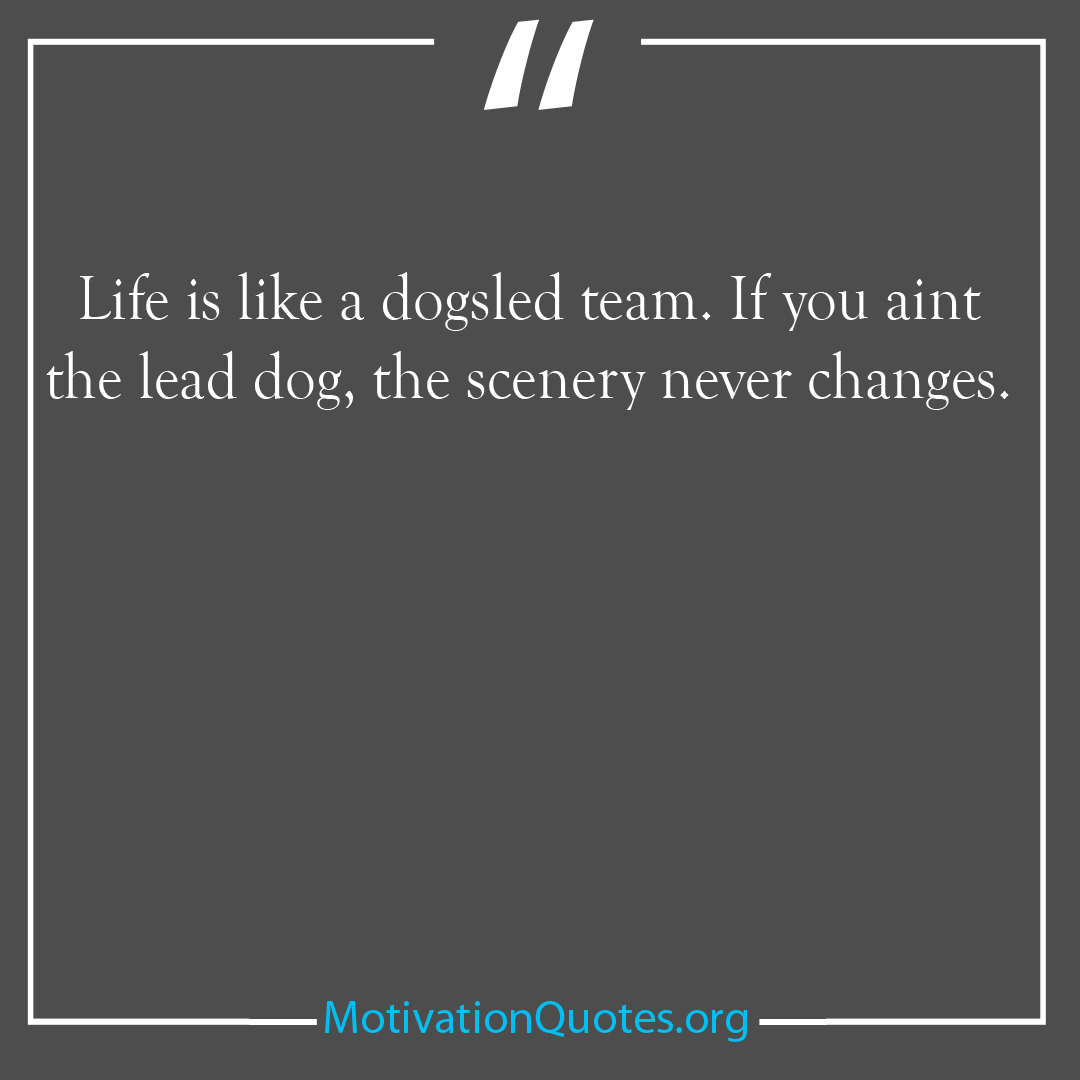 Life is like a dogsled team If you aint the lead