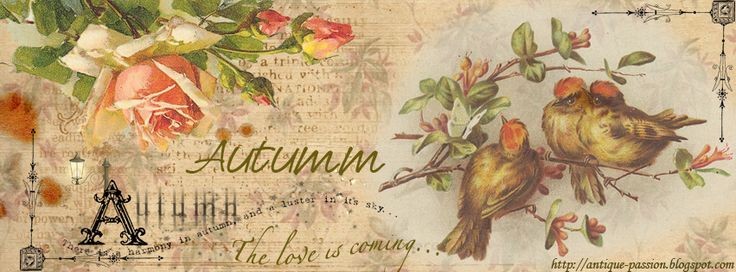 autumn cafe fb cover