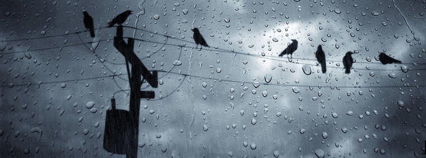 fb cover photos rainy paris