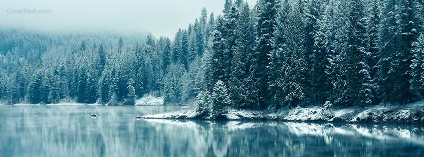ireland winter forest fb cover