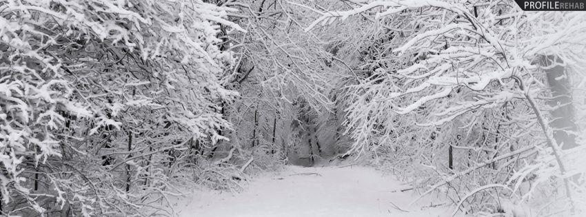 winter fb cover dark