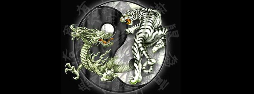 yin yang fb cover