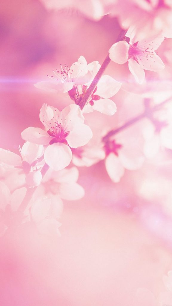 cute spring wallpaper iphone
