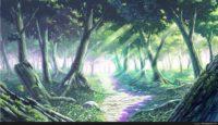 Anime Wallpaper Forest