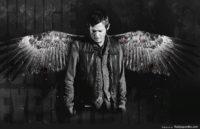 Daryl Dixon Wings Wallpaper