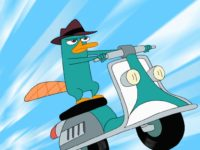 pictures of perry the platypus from phineas and ferb