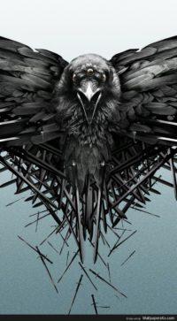 raven iphone wallpaper