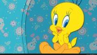 tweety bird desktop wallpaper