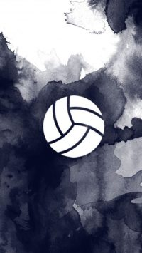 wallpaper volleyball