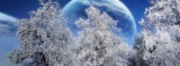 winter solstice woodland fb cover